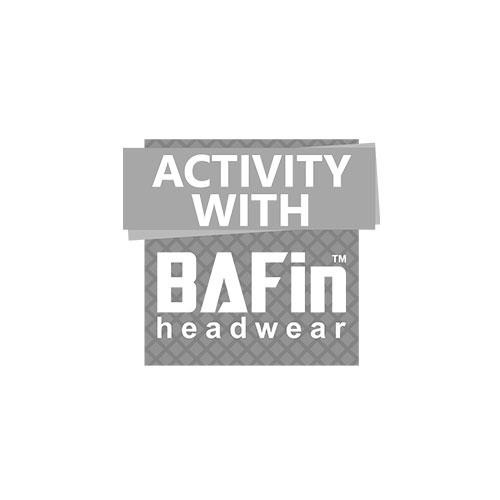 partners_bafin_500px